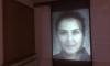 Physio.G(e)nom generative Videoinstallation/ brigitte felician siebrecht