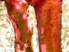 platane-rot_20x30